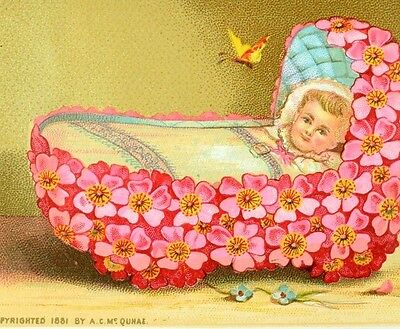 1881 Infant Baby In Pink Flower Crib Insect Bug C. Mc Quhae Victorian Card F80