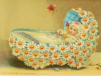 1881 Infant Baby In Daisy Flower Crib Insect Bug C. Mc Quhae Victorian Card F80