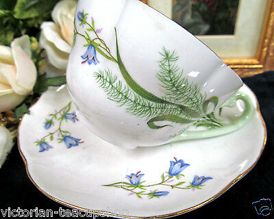 Shelley Tea Cup And Saucer Blue Floral Pattern Teacup Great Design