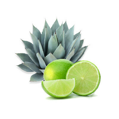 AGAVE LIME Fragrance Oil for Candles, Soaps, Melts - 10ml to 2.5L