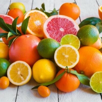 CITRUS FUSION Fragrance Oil for Candles, Soaps, Melts - 10ml to 2.5L