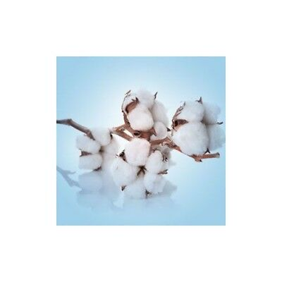 CLEAN COTTON Fragrance Oil for Candles, Soaps, Melts - 10ml to 2.5L
