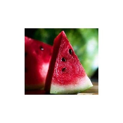 JUICY WATERMELON Fragrance Oil for Candles, Soaps, Melts - 10ml to 2.5L