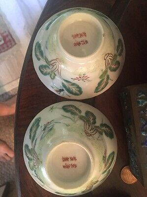 Highly Rare Pair Chinese Porcelain Bowls Mark Period Ching Insects