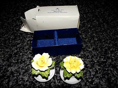 Aynsley Flowers Salt And Pepper Set Yellow 1St Quality