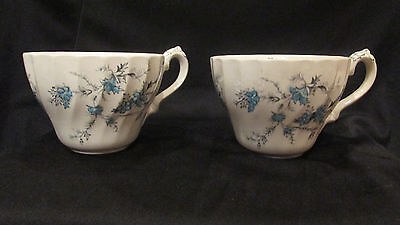 Set of 2 Myott Staffordshire Forget Me Not Cups