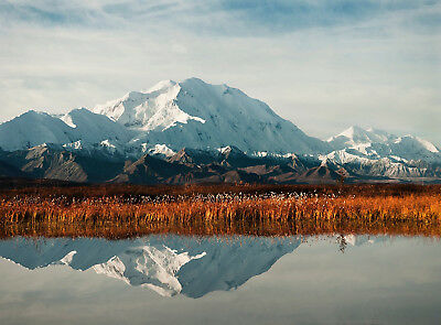 Photo Mount Mckinley Alaska Snowy Poster Wall Art Print Picture  Lf2950