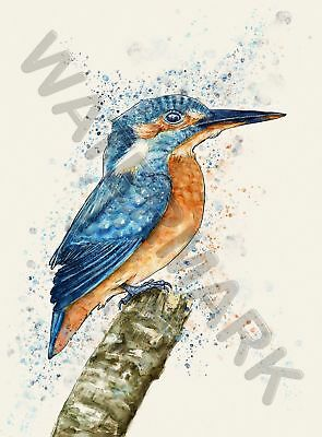 Kingfisher Watercolour Large Poster Art Print Lf3796