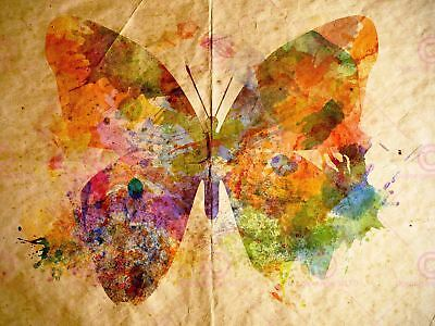 Painting Grungy Watercolour Butterfly Art Print Poster Mp5401A