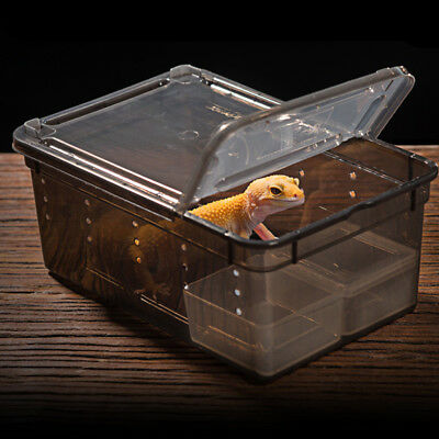 ABS Box Insect Reptile lizard Snake Transport Breeding Feeding Hatching Box