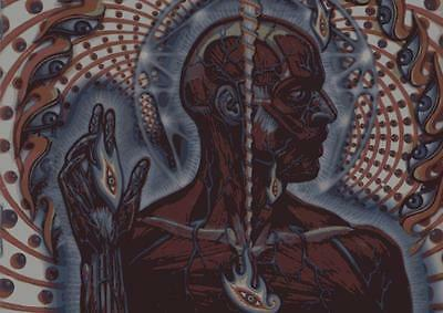 ALEX GREY PSYCHEDELIC POSTER Trippy Abstract Photo Print Poster A4 A3