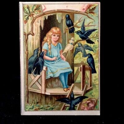 The Seven Ravens Lion Coffee Victorian Trade Card Picture 10 1880s Series