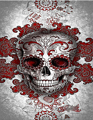 5D DIY Full Diamond Embroidery Painting Cross Stitch 20*25cm Z106 S3 Skull AU