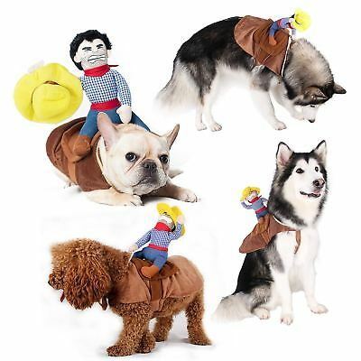 Pet Dog Riding Horse Funny Cowboy Costume Party Clothing
