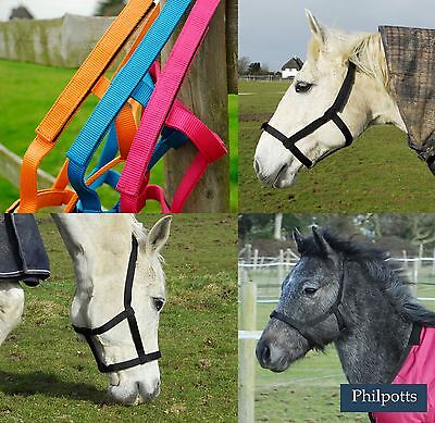 Field Safe Headcollar X/Full, Full, Cob, Pony, Small Pony, Foal VELCRO, NO METAL