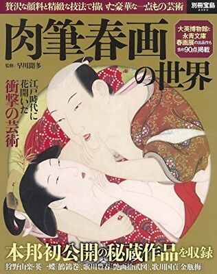 Japanese Woodblock Prints Art Ukiyoe Handwriting Shunga Collectible Hokusai