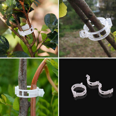 50pcs Trellis Tomato Clips Supports Connects Plants Vines Binder Twine Cages