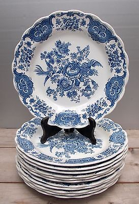 Faience Ridgway Windsor Douze assiettes plates @