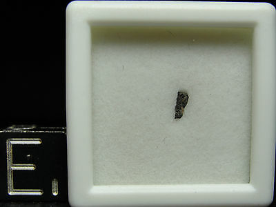 NWA 6697 Official Carbonaceous C2-ung - G090-0034 - Micro COA - the 13th CLASSED