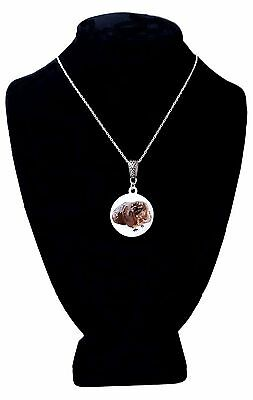 Lt. Edition Enamel Pendant Guinea Pig Necklace Crazy Guinea Pig Lady