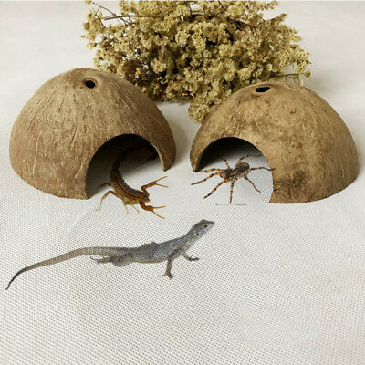 Small Pets Handmade Coconut Shells Horned Frog Reptile House Hiding Cave Nest