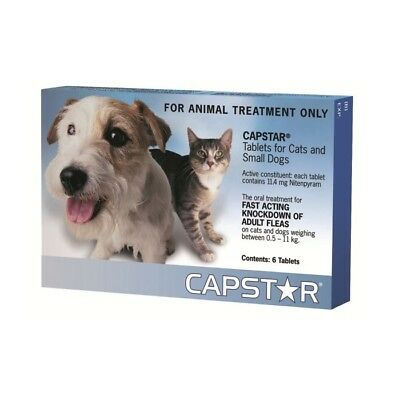 Capstar Blue Flea Tablets for Cats and Small Dogs 0.5-11kg 6 Tablets