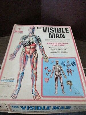 1959 THE VISIBLE Man Anatomy Model Science Kit No. 800 by Renwal ...