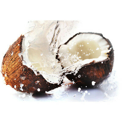 COCONUT RAIN Fragrance Oil for Candles, Soaps, Melts - 10ml to 2.5L