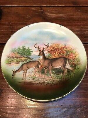 "EARLY R K Beck Buffalo Pottery Deer Wildlife Platter Gold Trim 12.75"" Diameter"