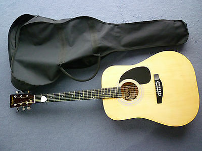 Falcon FG100N Dreadnought Acoustic Guitar + Books/CD NEARLY NEW EXC CONDITION