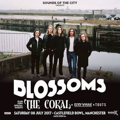 """MX30343 Blossoms - English Indie Pop Band Tom Ogden 14""""x14"""" Poster"""