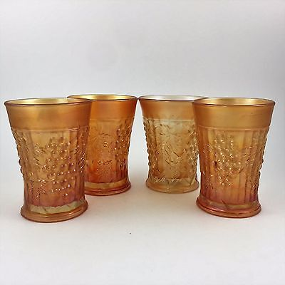 Rare Northwood Marigold Grape Arbor Carnival Glass Antique Tumbler Color