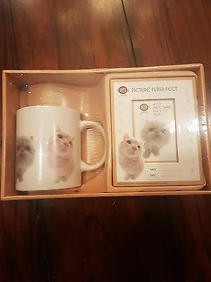 Cat Mug Set with Picture Frame With Cocoa