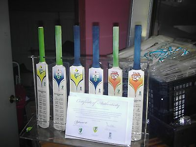 collectable ashes mini bat collection