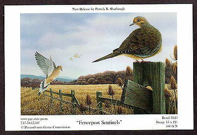 Pa Pennsylvania Game Commission WTFW 2008 Mourning Dove Lithograph Print Card