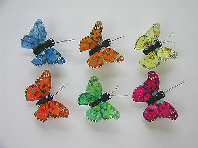 12 Speckled Feather butterflies, 6 assorted colours,