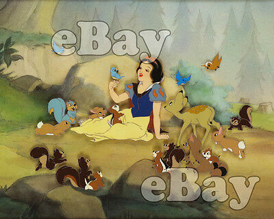 Rare! WALT DISNEY'S SNOW WHITE AND THE SEVEN DWARFS Cartoon Color 8 X 10 Photo