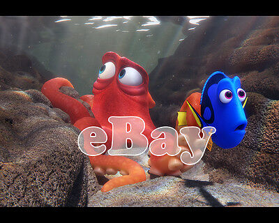 Rare! DISNEY PIXAR'S FINDING DORY Cartoon Color 8 X 10 Photo