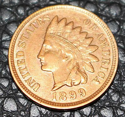 1895  Indian Head Penny / Cent - Appears AU