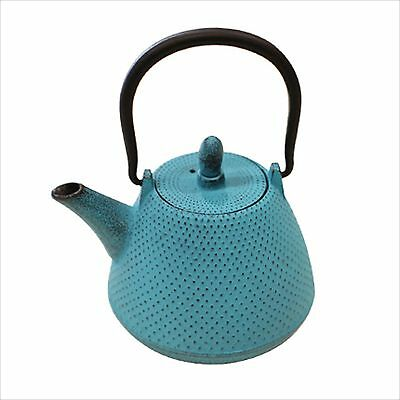 NANBU TEKKI Japanese Cast Iron Teapot Kyusu Dome Type SKY BLUE 0.4L Japan NEW