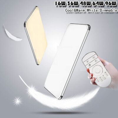 Dimmable LED Ceiling Light Ultra Thin Flush Mount Kitchen Lamp Home Fixture