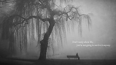 quotes bench lonely  / wall Canvas print Home Decor quality choose  size