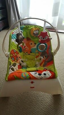 fisher price bouncer new without tags must go