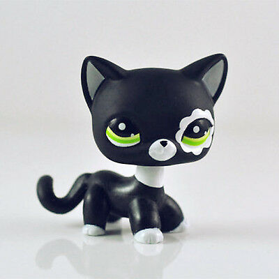 LPS #2249 Littlest Pet Shop Black Short Hair Cat Green Eyes Cute Kitty Girl Toys
