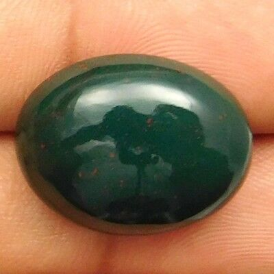 20 cts Natural Nice Untreated Bloodstone Gemstone Oval Shape Loose Cabochon