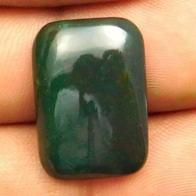 14.50 cts Natural Bloodstone Gemstone Octagon Shape Loose Cabochon For Jewelry
