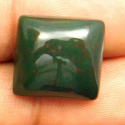 14.50 cts Natural Bloodstone Gemstone Cushion Shape Loose Cabochon For Jewelry
