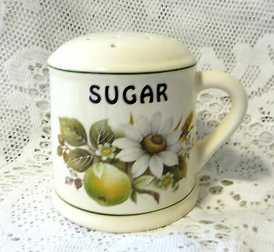 Vintage Brixham Pottery Sugar Shaker Autumnal Fruits - Made In Devon England
