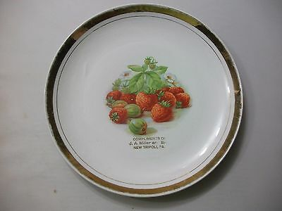 Antique Advertising Plate Compliments Of J.a. Miller And Bros New Tripoli, Pa