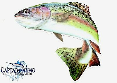 Vinyl Fishing Decal Rainbow Trout Fish Sticker Fish Decal Boat Kayak M4771